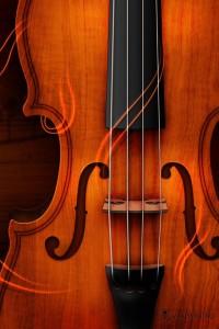 Fiddle scroll